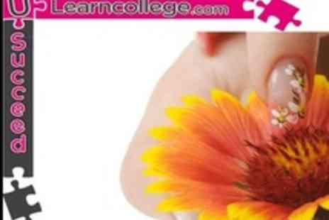 ULearn College - Professional Nail Art Course With Industry Recognised Certificate - Save 50%