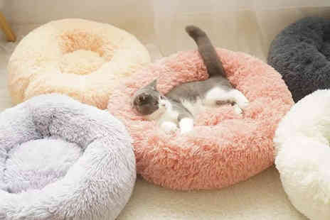 WowWhatWho - Small, medium and large plush round pet bed - Save 82%