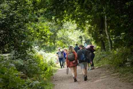 Cultural Heritage - Sherwood Forest Explorer Private Group Walking Tour of Sherwood Nature Reserve - Save 0%