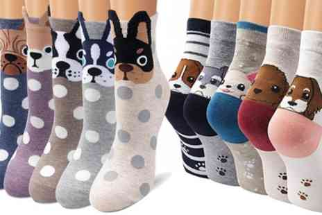 Groupon Goods Global GmbH - Womens Dog Socks Five Pack - Save 60%