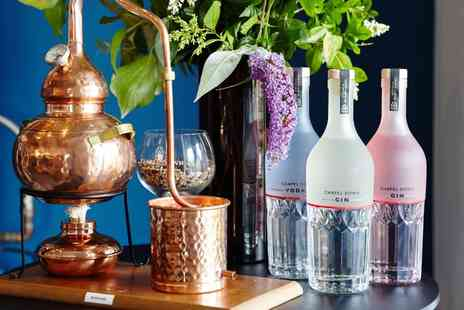 Chapel Down Gin Works - Learn the Art of Distillation and Make Your Own Gin for Two - Save 0%
