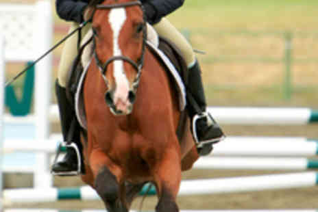 Friars Hill Stables - One Hour Horse Riding Lesson - Save 53%