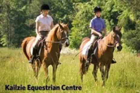 Kailzie Equestrian Centre - Horse Riding One Hour Beginners Lesson  - Save 50%