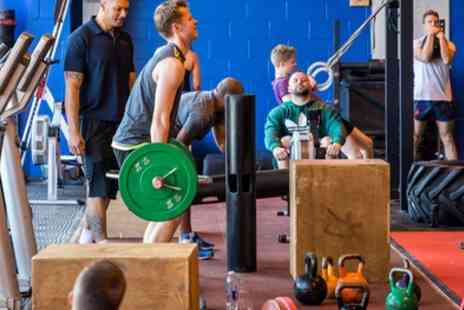 Trimnasium - Five or Ten Gym Passes - Save 82%