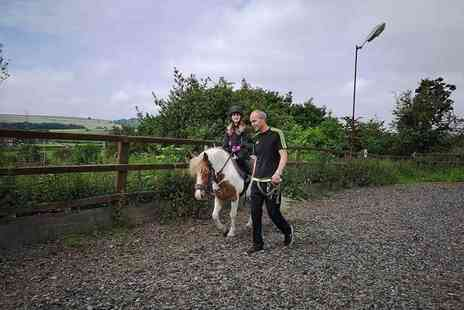 Lily Lodge Equestrian Centre - One hour horse riding lesson and a one hour stable management lesson - Save 24%