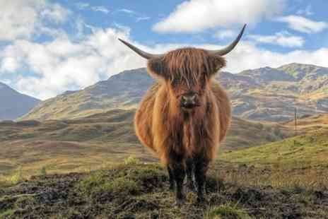 Happy Tours Scotland- Cairngorm Mountains, Outlander and Whisky 8 Seater full day Tour - Save 0%