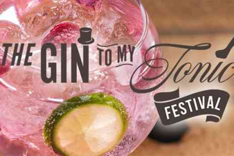 The Gin to my Tonic - One ticket to The Gin from 1st To 8th February - Save 34%