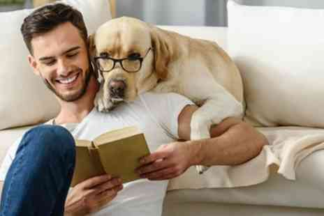 International Open Academy - Accredited Animal Psychology Online Course CPD/CE Certified - Save 88%