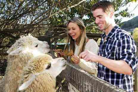 The Llama Park - Entry to The Llama Park for one adult and one child - Save 67%
