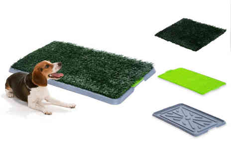 Mhstar - Puppy training pad - Save 68%