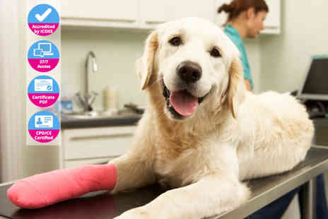 Holly and Hugo - Online animal physical therapy course - Save 0%