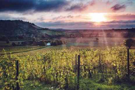 Denbies Wine Estate - Indoor Wine Experience with Glass of Sparkling for One, Two or Four - Save 47%