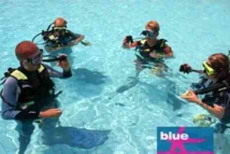 Blue - Scuba Diving Lesson For Four - Save 39%