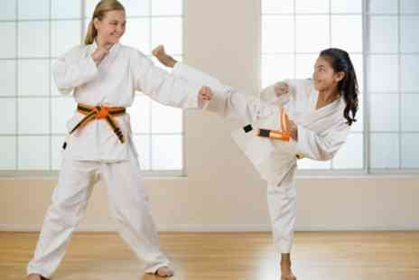 Shin Gi Tai Martial Arts Academy - Three or Six Martial Art Classes for Child or Adult - Save 82%
