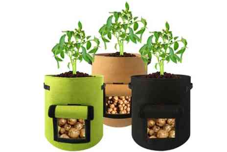 Groupon Goods Global GmbH - Vegetable Planting Bag with Side Window - Save 47%