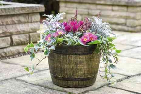 Groupon Good - One, Two or Five Whiskey Barrel Planters - Save 40%