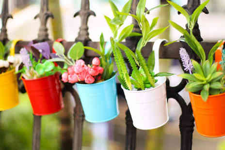 MBLogic - One metal hanging flower pot choose from 10 colours - Save 88%