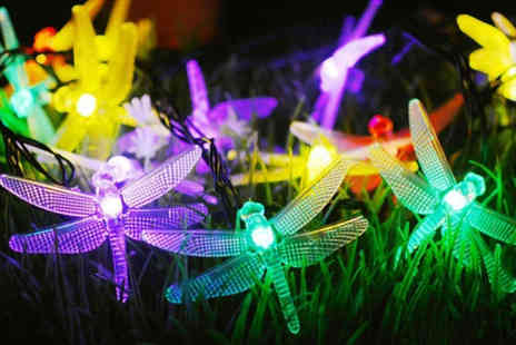 MBLogic - Set of outdoor dragonfly fairy lights - Save 67%