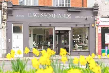 E Scissorhands - Wash, Cut, Blow Dry with Conditioning, Highlights or Full Head Colour - Save 69%
