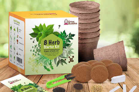 Grow Buddha - Grow Your Own Herbs kit including biodegradable pots, seeds, soil discs - Save 55%