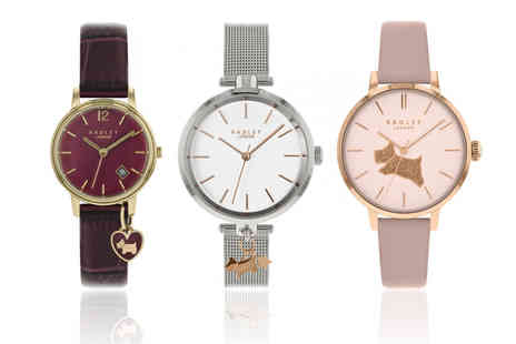 Brand Arena - Radley watch choose from 18 designs - Save 0%