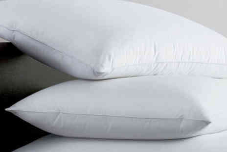 Direct Warehouse - Pair of Egyptian cotton pillows - Save 0%