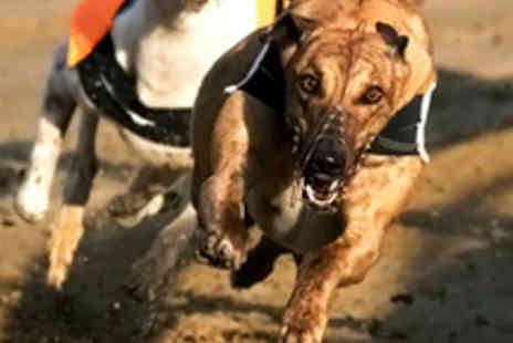 Owlerton Greyhound - Greyhound Racing Package for Two - Save 72%