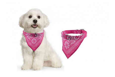 YelloGoods - Adjustable pet bandana collar in black, red, blue, rose red or green - Save 70%