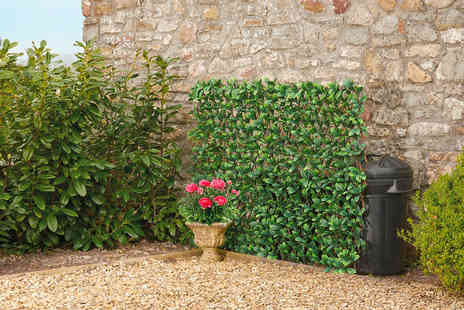 CJ Offers - One expandable artificial hedge panel in Evergreen Laurel or Red Acer upgrade for multiple panels - Save 33%