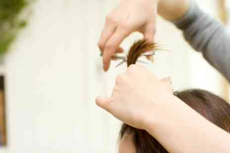 Kutz n Beauty - Wash, Cut and Blow Dry - Save 46%