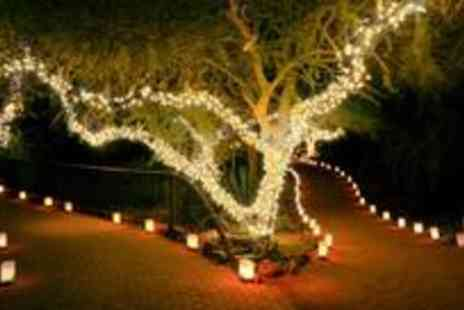 Gadgets and Products - £10 for 100 LED solar powered fairy lights - Save 71%