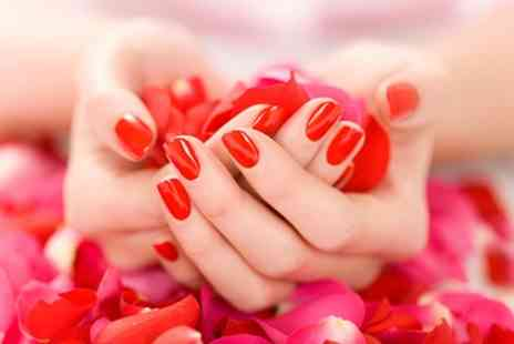 Shass Nails and Beauty - Gel or Shellac Polish on Hands or Feet or Gel Polish on Both - Save 33%