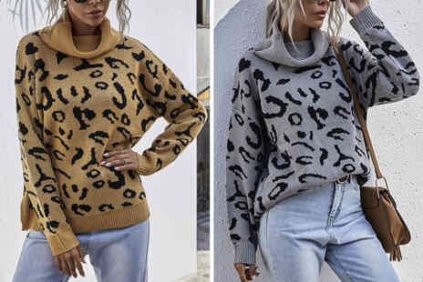 Backtogoo - Womens leopard print jumper in brown or grey - Save 78%