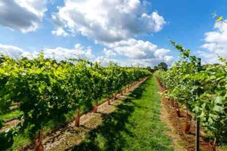 Kingscote Estate & Vineyard - Vineyard Tour with Tasting for Two or Four - Save 35%