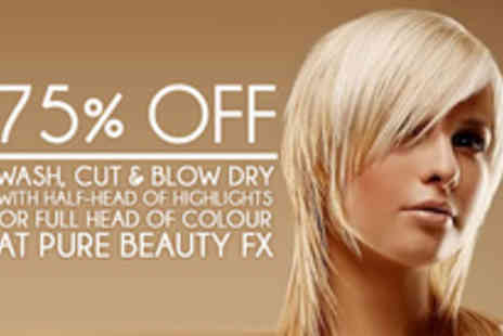Pure Beauty FX - Wash, cut, blow dry and colour - Save 75%