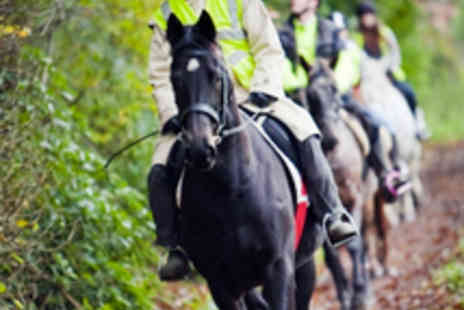Fitzworthy Equestrian Centre - 60 Minute Horse Riding Hack in the Countryside - Save 55%