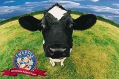 Tweddle Farm - Entry to Tweddle Farm For Two With Bag of Animal Feed - Save 58%