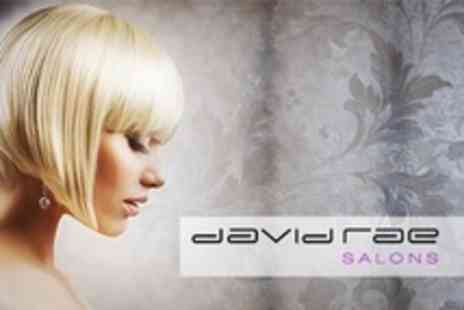 David Rae Salons - Half Head Highlights With Cut and Blow Dry - Save 71%