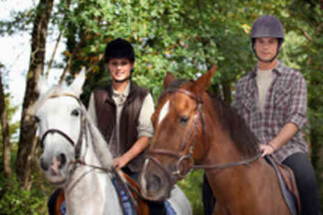 Ridgewood Equestrian - Two 30 minute child riding lessons - Save 63%