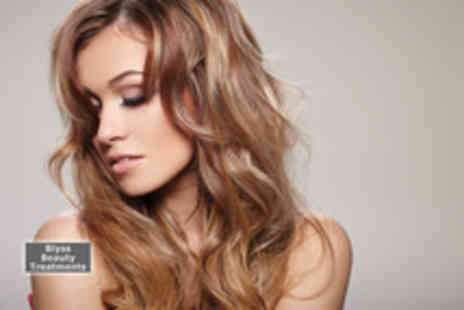 Blyss Hair and Beauty - A half head of professional foil highlights cut and blow dry - Save 65%
