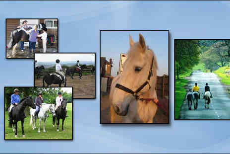 Brimington Equestrian Centre - Private riding lesson - Save 60%