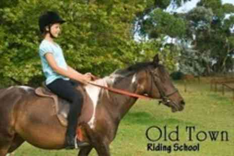Old Town Riding School - Two Hours Worth of Private Horseback Lessons - Save 78%