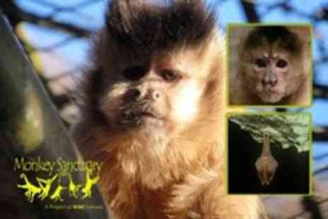The Monkey Sanctuary - The Monkey Sanctuary Entry For Two Adults - Save 51%
