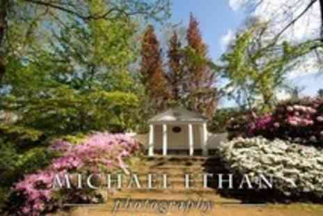 Michael Ethan Photography - Two Hour Photography Tuition Walking Class - Save 65%