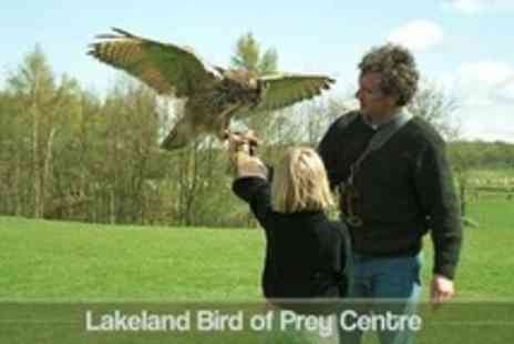 Lakeland Bird of Prey Centre - Admission For Two in Lakeland Bird of Prey Centre - Save 14%