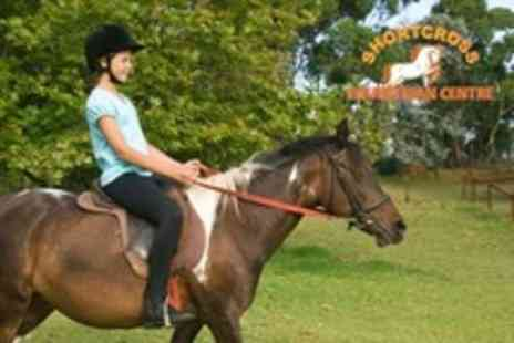 Shortcross Equestrian Centre - Horse Riding Lesson and Trek - Save 60%