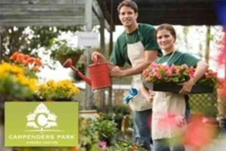 Carpenders Park Garden Centre - Spend On Gardenware - Save 50%