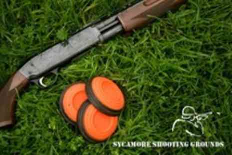 Sycamore Shooting Grounds - Live Ammunition Rifle Shooting Clay Pigeon Shooting - Save 50%