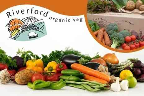 Riverford Organic Vegetables - Four Mini Organic Vegboxes Delivered to Your Door - Save 59%