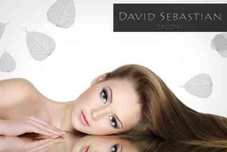 David Sebastian Salons - Brazilian Blow Dry - Save 72%